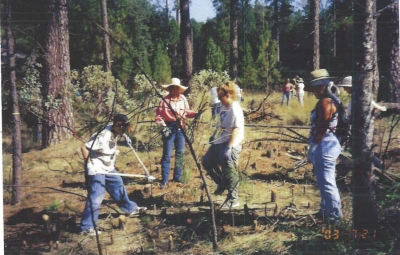Crane Valley volunteers begin restoration